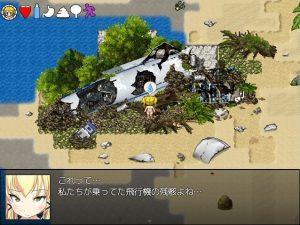 無人島墜落現場