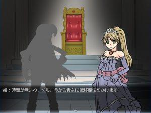 OP,姫様との会話